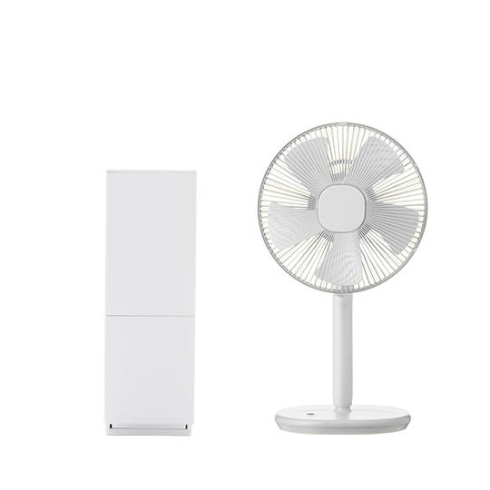 XQJ-C010 除濕機(送遙控風扇)